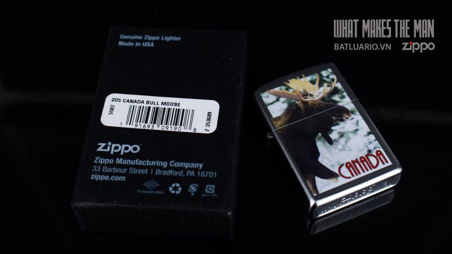 ZIPPO 205 CANADA BULL MOOSE 1