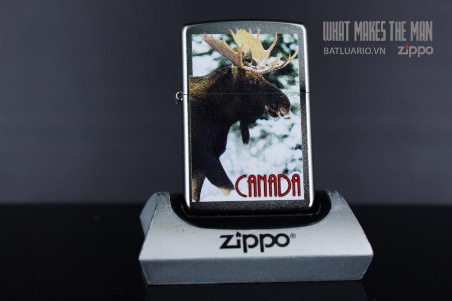 ZIPPO 205 CANADA BULL MOOSE 2